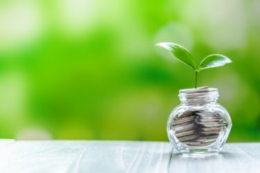 貯金から芽が出るイメージ画像